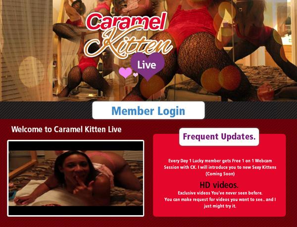 Caramel Kitten Live Special Offer