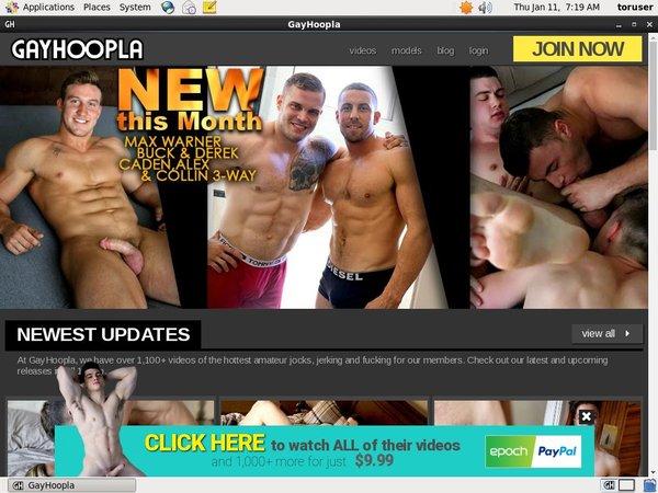 Gay Hoopla Gxplugin (IBAN/BIC)